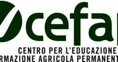 CeFAP, nuovi corsi Pipol in partenza a settembre